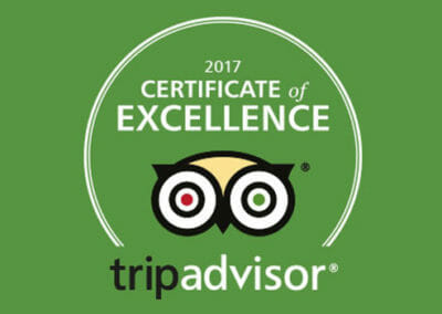 Top Owners Share Their Tips for Certificate of Excellence Success